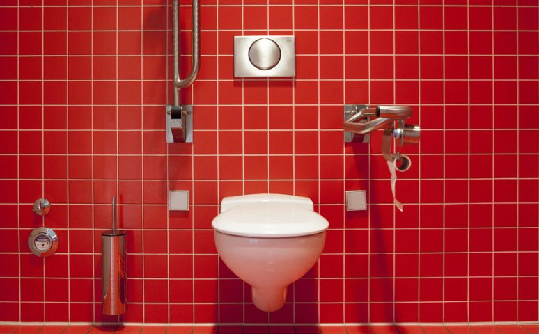 Disabled toilet - Free for commercial use No attribution required - Credit Pixabay